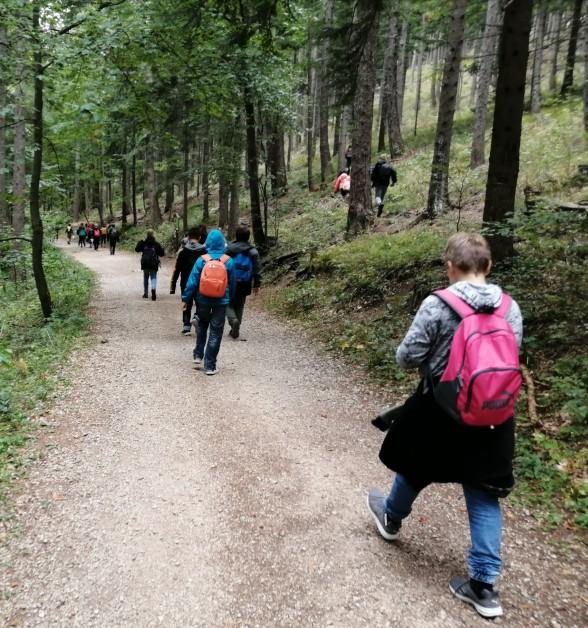 Ausflug 2A Saft-Farbik Tierpark