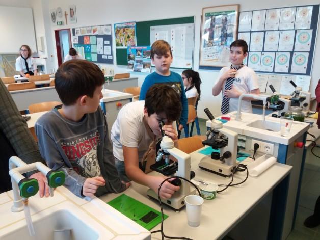 Arbeit mit dem Mikroskop